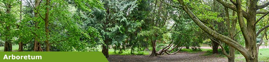 slider arboretum