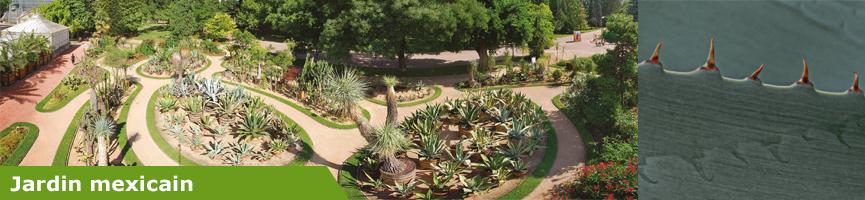 slider jardin mexicain
