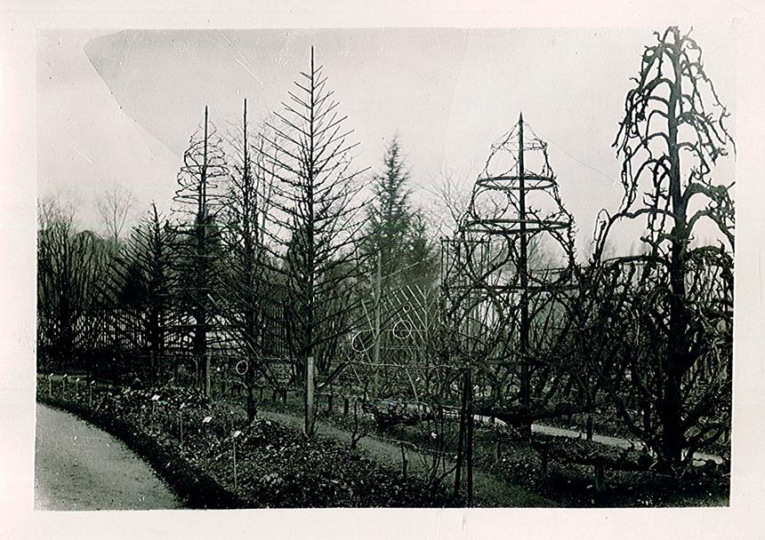 Historique des jardins ext rieurs jardin botanique de lyon for Jardin botanique lyon