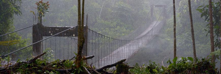 Pont Rio Piatua
