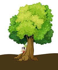 ILLSUTRATION - Sur la trace des arbres.jpg