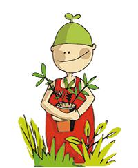 ILLUSTRATION_JDP_Biologie des plantes.jpg