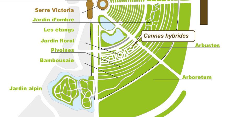Plan_web_cannas