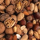 LOGO - cours de botanique _fruits et graines