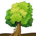 Logo - Sur la trace des arbres.jpg