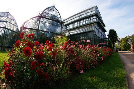 250 ans d 39 histoire du jardin botanique lyon jardin for Jardin zoologique de lyon