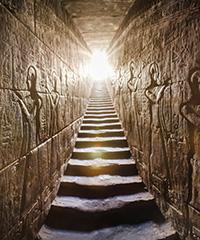 Plantes sacrées des pharaons